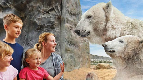 The Zoo – Gelsenkirchen